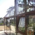 Siltie ziemas dārzi - 108.JPG