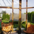 Siltie ziemas dārzi - 79.JPG